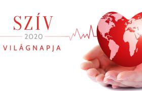 Ma van a Szív Világnapja: A magyarok 4%-a jár éves kardiológiai szűrésre