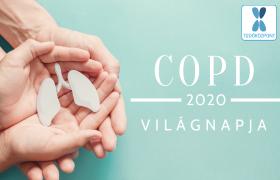 500 ezer krónikus tüdőbeteg élhet Magyarországon